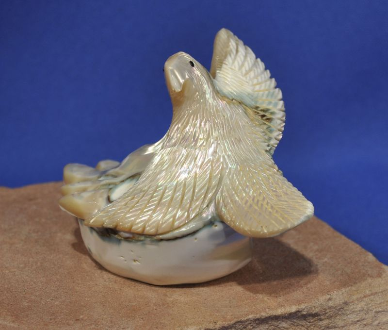 Zuni fetish carving bird eagle conch shell high detail very fine